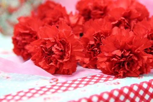 115A3604 母の日、いつものカーネーションも日比谷花壇ならこんなに素敵♪