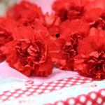 【母の日】いつものカーネーションも日比谷花壇ならこんなに素敵♪