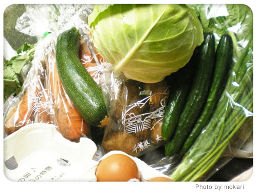 20080627 無農薬野菜のミレーの野菜が到着。その日の夕食、出たゴミの話