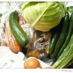 無農薬野菜のミレーの野菜が到着。その日の夕食、出たゴミの話(1日目)