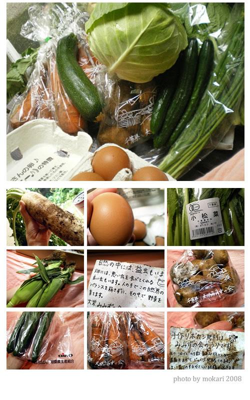 20080713 無農薬野菜ミレーを試してみた感想まとめ(7日目)