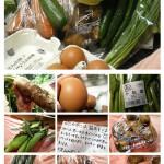 無農薬野菜ミレーを試してみた感想まとめ(7日目)