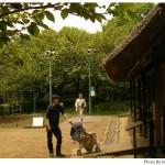 【京都→東京】子連れ旅行(帰省)3日目「江戸東京たてもの園」見学編(1)