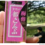 【京都→東京】子連れ旅行(帰省)3日目「江戸東京たてもの園」に行く編(2)