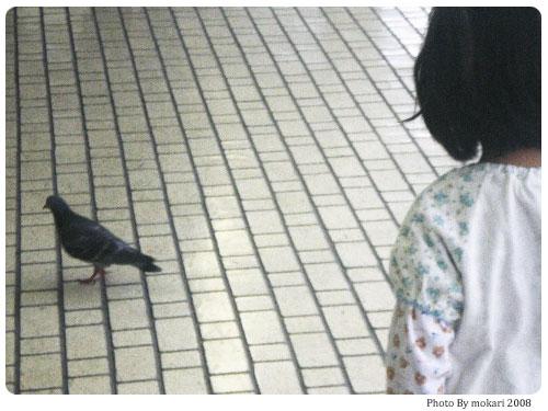 20080816-3 【京都→東京】子連れ旅行(帰省)5日目帰京・旅先での病気編