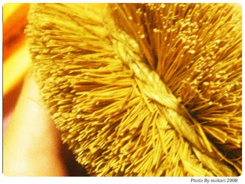 20080916-1 亀の子束子をレビューします。
