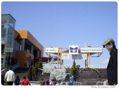 20090315-4 【京都→大阪】子連れ旅行(日帰り)はじめての海遊館