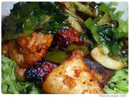 20090421-2 栗原はるみのレシピ「揚げ鶏のねぎソース」を作ってみましたが・・・