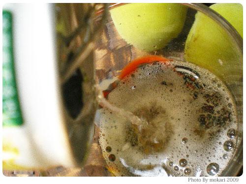 20090606-12 チョーヤ ウメッシュゼリーでぷるしゅわーを体験を見てぷるしゅわー体験