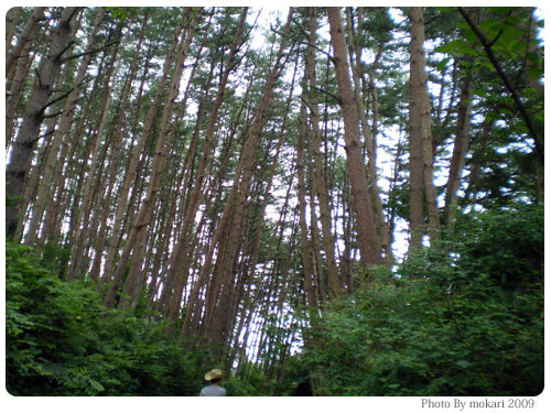 20090721-7 【京都→岩手】子連れ旅行2日目:碁石浜・碁石海岸・大船渡博物館・碁石温泉・キャンプ場