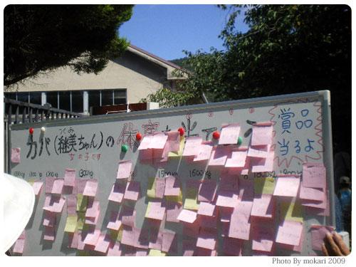 20090915-9 京都市動物園の「カバさんの体重測定」に参加して。