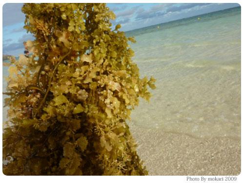20091125-37 Club Med kabira(クラブメッド カビラ)4日目:カビラビーチ、自然散策