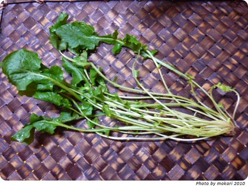 20100108-6 JA西条、春の七草。しまった、七草粥を夕飯に食べる。 なずな?ほとけのざ?