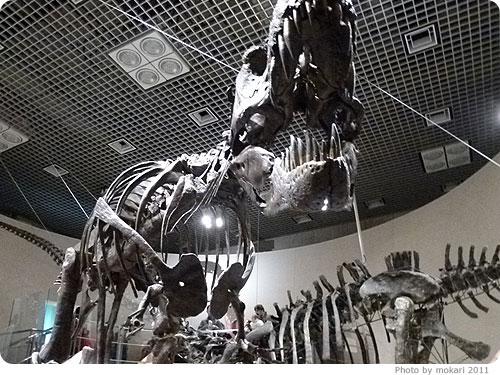 20110308-3 はじめての、東京「国立科学博物館」