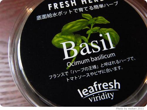 20111117-3 バジルが食べたくて、なぜかバジル栽培セットを買ったお話