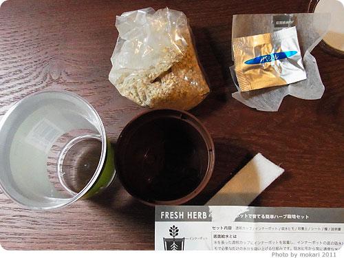 20111117-4 バジルが食べたくて、なぜかバジル栽培セットを買ったお話