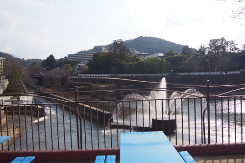 P1114091 京都市動物園