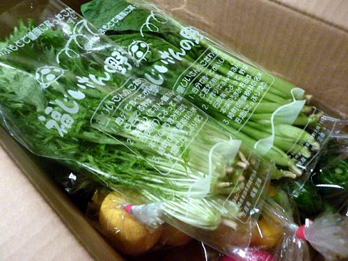 P1150348 九州の野菜を取り寄せられる通販サイト、やお九州の野菜
