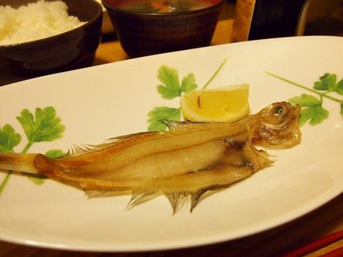 P3043527 福井県産の一夜干し。カレイの味くらべ(ベタカレイ、白カレイ、赤カレイ)