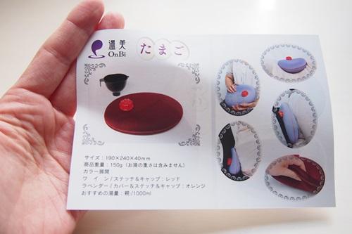 P3235503 1年中使えるやわらか素材の湯たんぽ