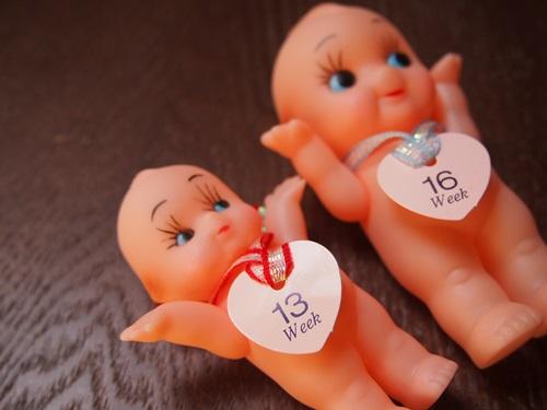 P4255477 妊娠7ヶ月になるまでの思い出ばなし