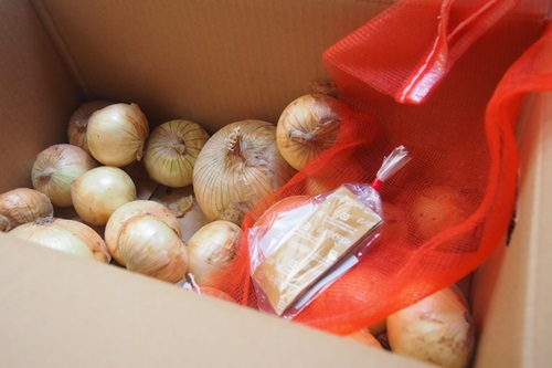 P5283073 淡路島の新たまねぎ10キロを楽天で箱買い(多すぎて友達におすそわけ)