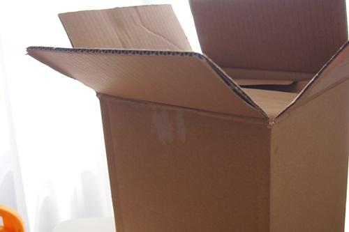 P6046146 使えば家が綺麗になるアレのセットを購入した理由