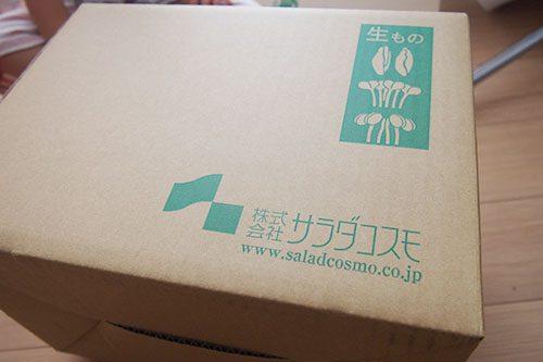 新鮮スプラウト11品野菜セットの箱