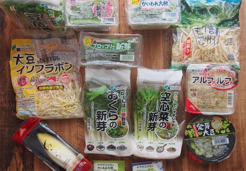 サラダコスモちこり村 新鮮スプラウト11品野菜セット
