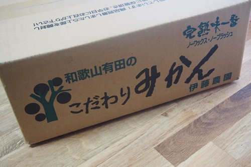 P6246393 通販で青梅3キロお取り寄せ(伊藤農園)