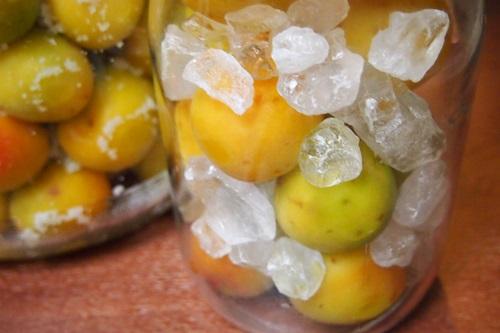 P6263360 梅を梅ジュースと梅干に(2014年梅しごと)