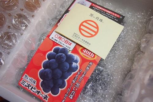 P7260337 広島県産、黒い真珠「三次ピオーネ」ブドウ