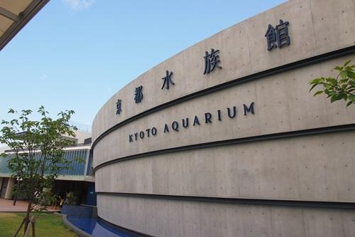 P7280371. はじめての京都水族館