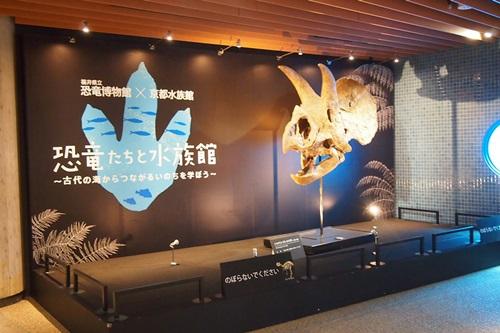 P7280372 はじめての京都水族館