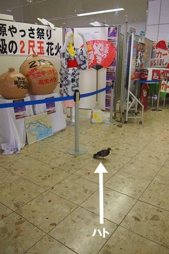 P8070981 [広島]JR三原駅の周辺を散策した感想