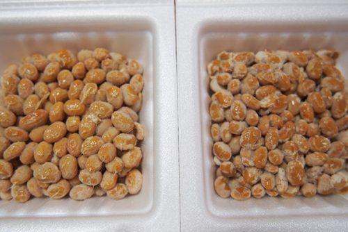 京都生協の「納豆」豆の見た目の比較