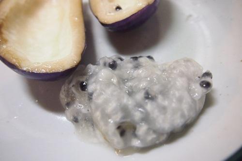 あけびの種部分