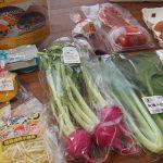 食材宅配の「オイシックス」ってどんな野菜・食材が届くの?レポ