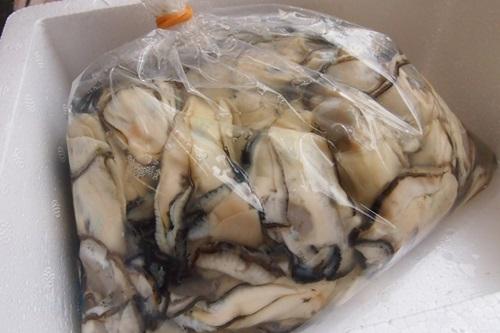 PC063470 殻なしの生牡蠣