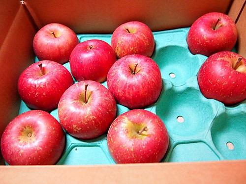 PC119948 青森りんごを楽天で箱買いした