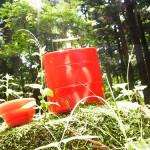 赤いピクニックボックス(Primal Designs)を持ってピクニックしてみた