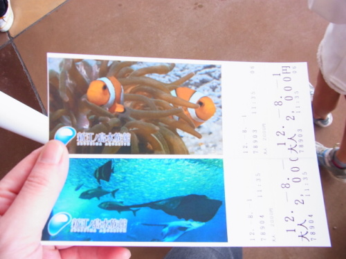 R1156174 はじめての、神奈川「新江ノ島水族館」