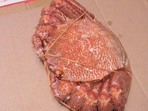 R1159345 ネット通販で毛蟹をお取り寄せしました(去年の失敗から学ぶ)