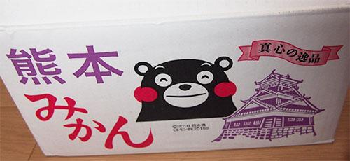 熊本の極早生みかん 箱にくまもん